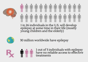 Screenshot of an infographic about NINDS Epilepsy Centers Without Walls